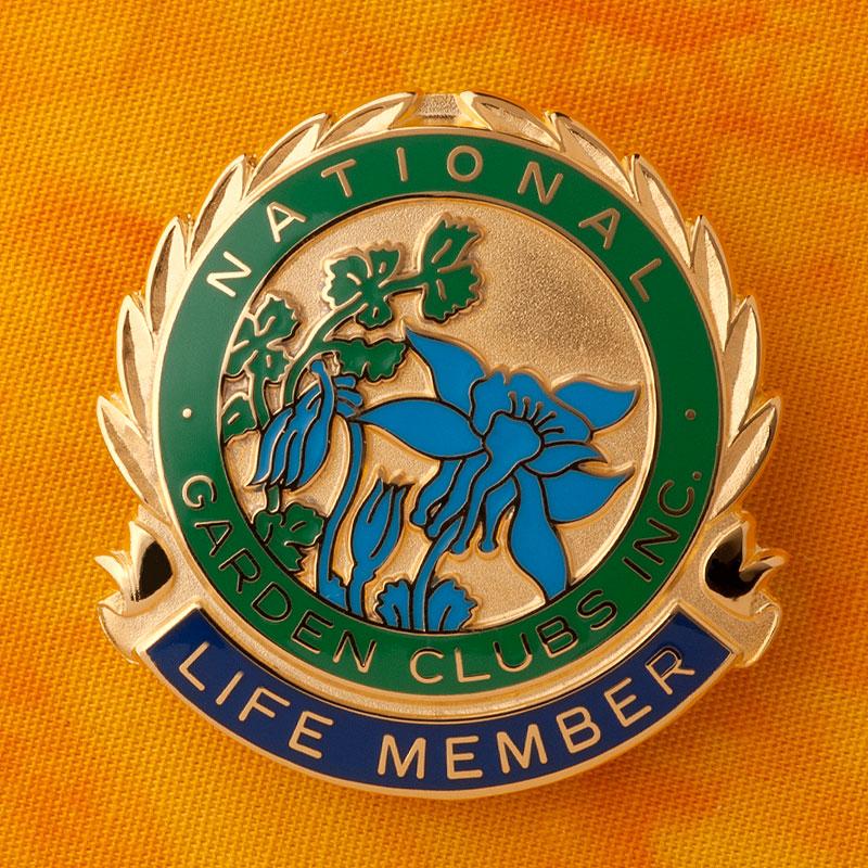 National Life Member Pin