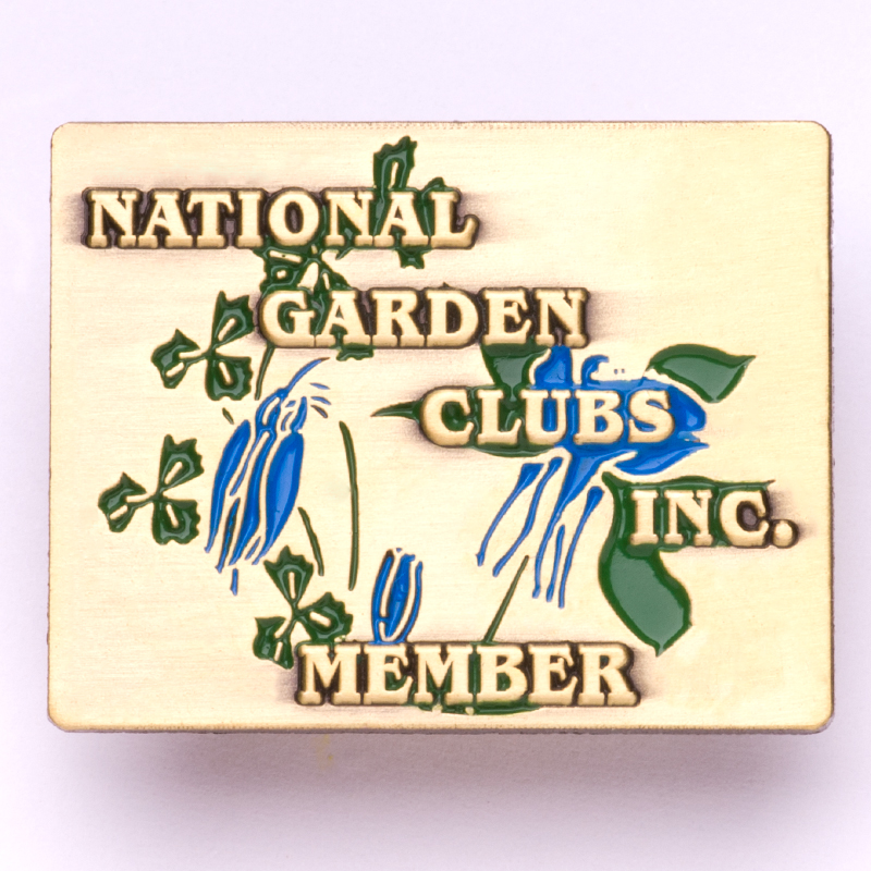 NGC Membership Pin