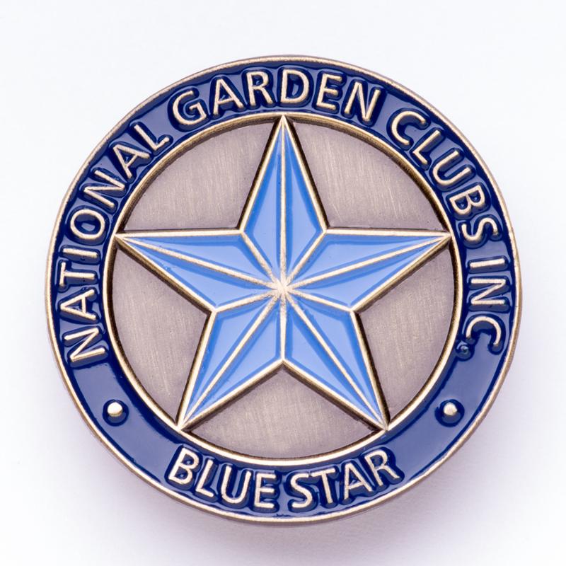 Blue Star Memorial Pin